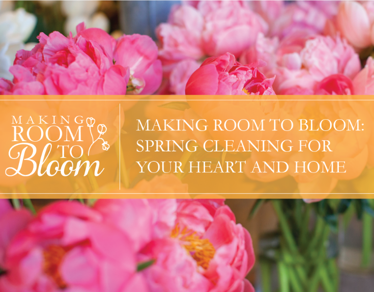 Room 2Bloom 2